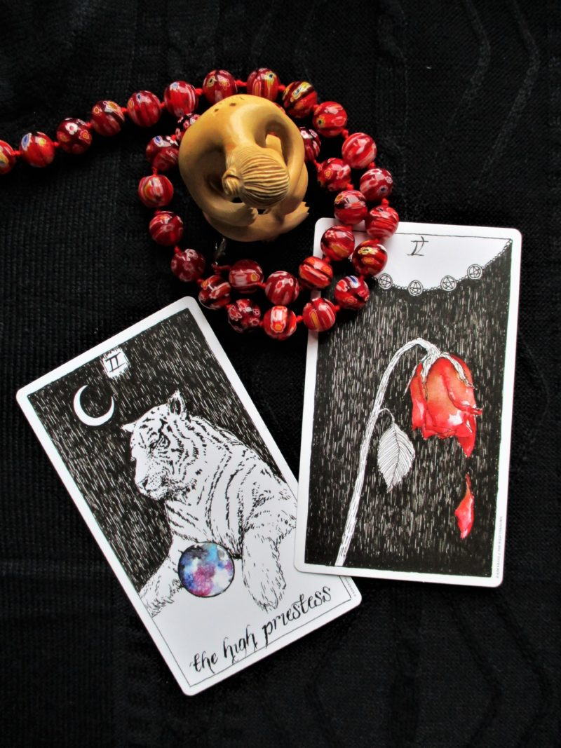 Wild Unknown Tarot by Kim Krans